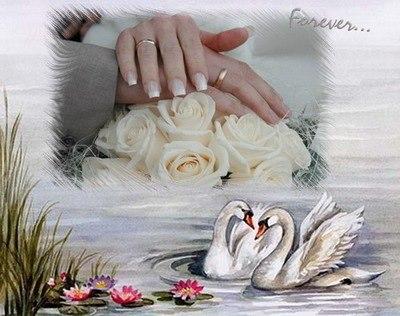 Поздравления на свадьбу молодым от родственников 127