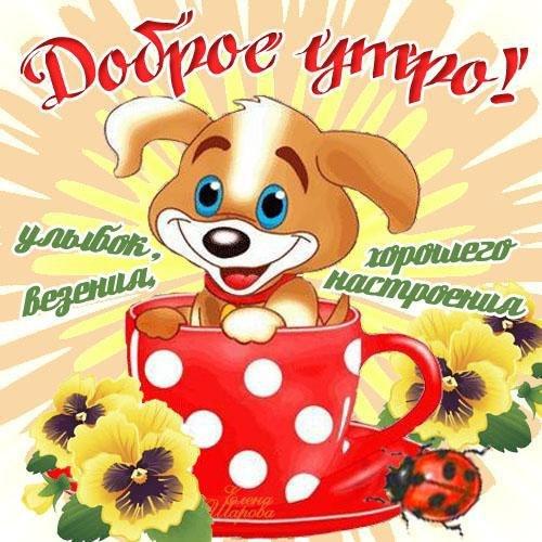 Картинки с пожеланиями доброго утра и хорошего дня девушке