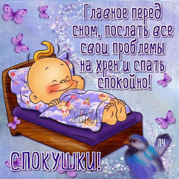 Смешное пожелание спокойной ночи подруге прикольные